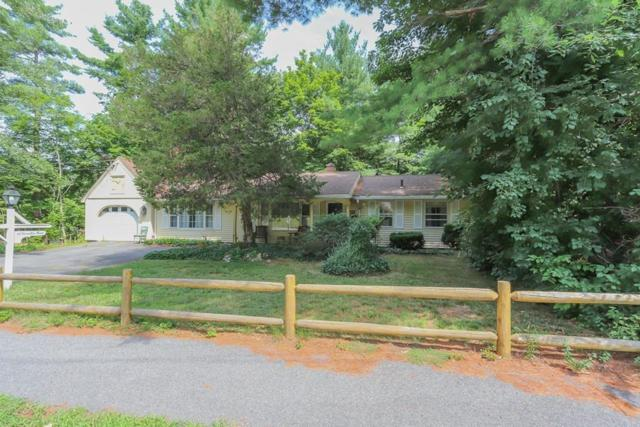 22 Hamilton Road, Peabody, MA 01960 (MLS #72372429) :: Lauren Holleran & Team