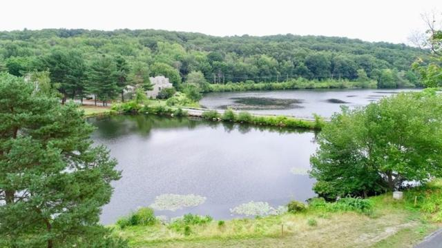 107 Millpond #0, North Andover, MA 01845 (MLS #72373142) :: The Muncey Group