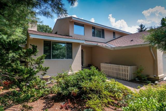 224 Allandale Road A, Brookline, MA 02467 (MLS #72375700) :: The Muncey Group