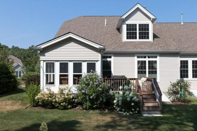 46 Clam Pudding, Plymouth, MA 02360 (MLS #72377040) :: Westcott Properties