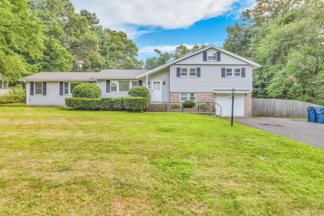43 Virginia Ave, West Springfield, MA 01089 (MLS #72380085) :: Hergenrother Realty Group
