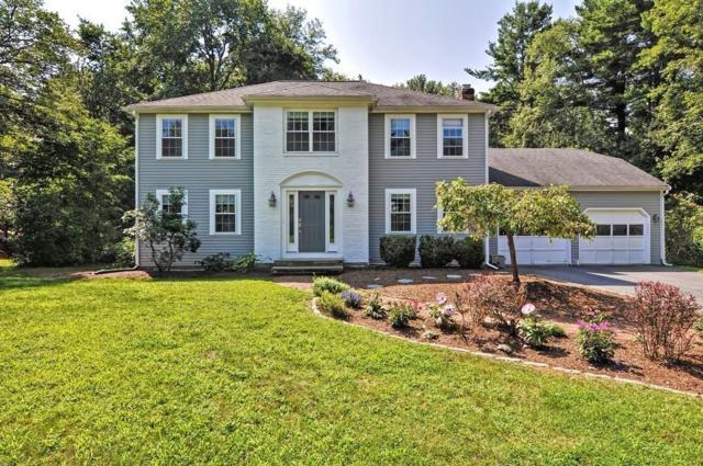 48 Briarcliff Ln, Holliston, MA 01746 (MLS #72380331) :: The Goss Team at RE/MAX Properties