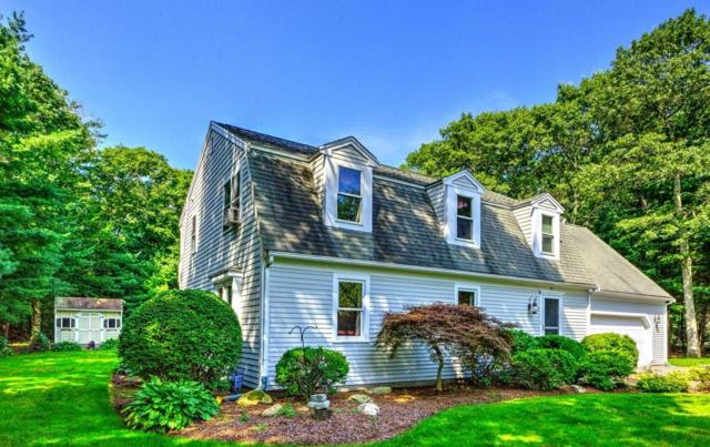 43 Anchor Dr, Sandwich, MA 02644 (MLS #72388311) :: Hergenrother Realty Group