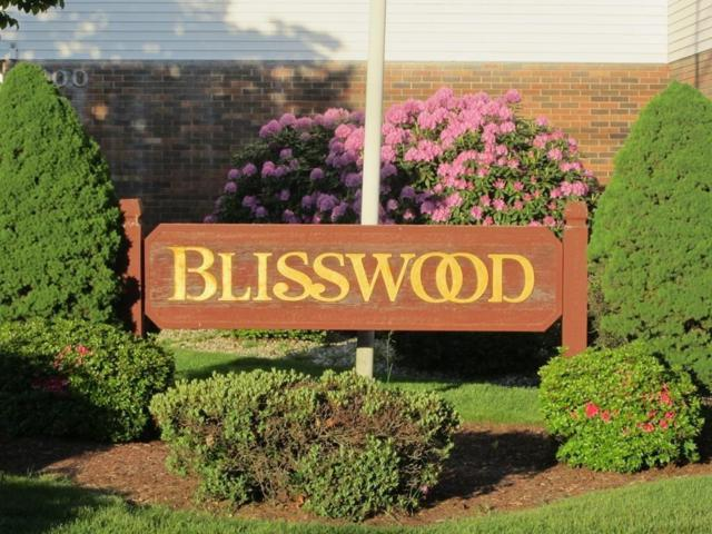 114 Blisswood Village #114, Ludlow, MA 01056 (MLS #72392399) :: Exit Realty