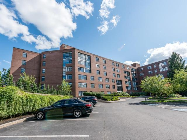 79 Florence Street 504S, Newton, MA 02467 (MLS #72393810) :: The Gillach Group