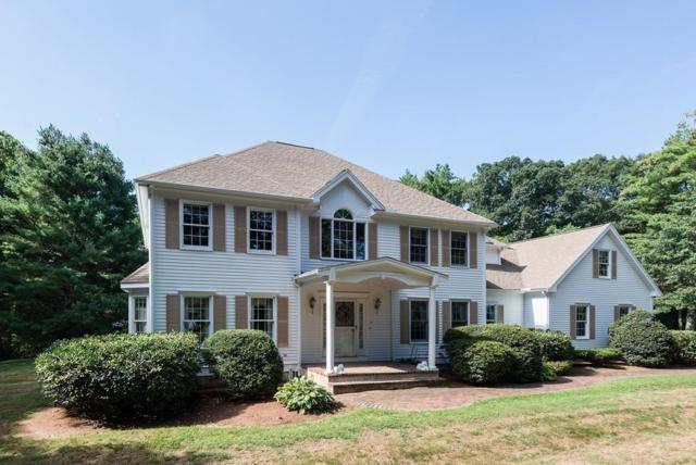 17 Wilkeson Way, Foxboro, MA 02035 (MLS #72394468) :: ALANTE Real Estate