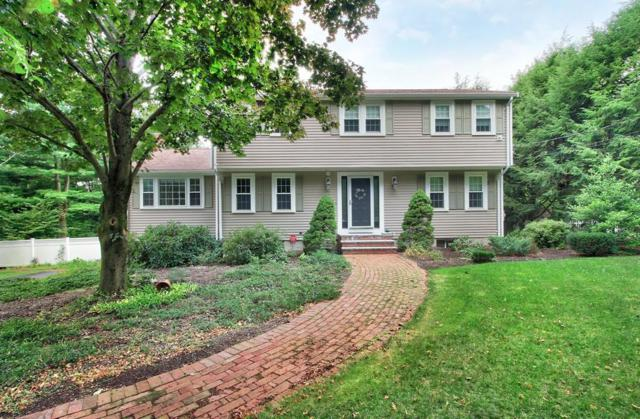 193 Forbes Road, Westwood, MA 02090 (MLS #72394758) :: Trust Realty One