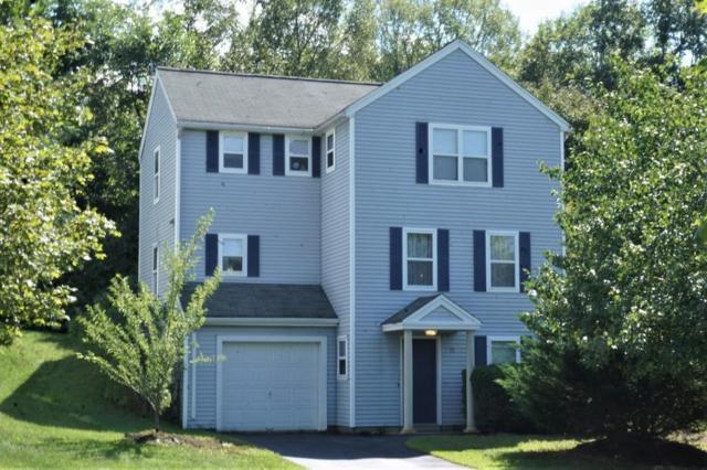 15 Lawtons Way, Westborough, MA 01581 (MLS #72397907) :: Westcott Properties