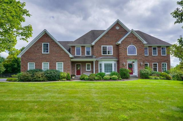 3 Orchard Hill Drive, Westborough, MA 01581 (MLS #72398229) :: Vanguard Realty