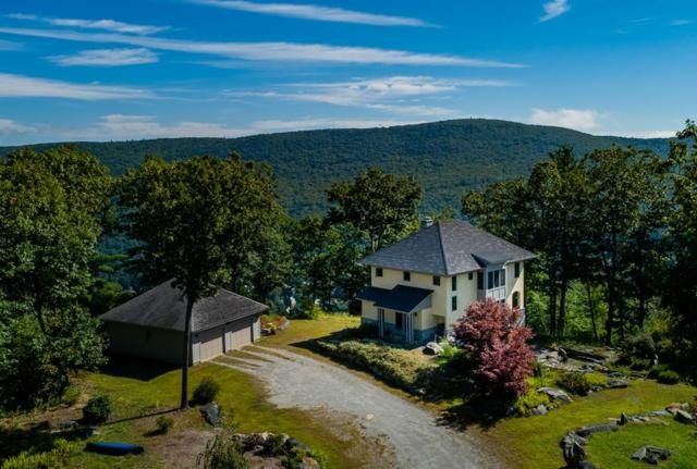 48 Crittenden Hill Rd, Buckland, MA 01338 (MLS #72398385) :: Local Property Shop