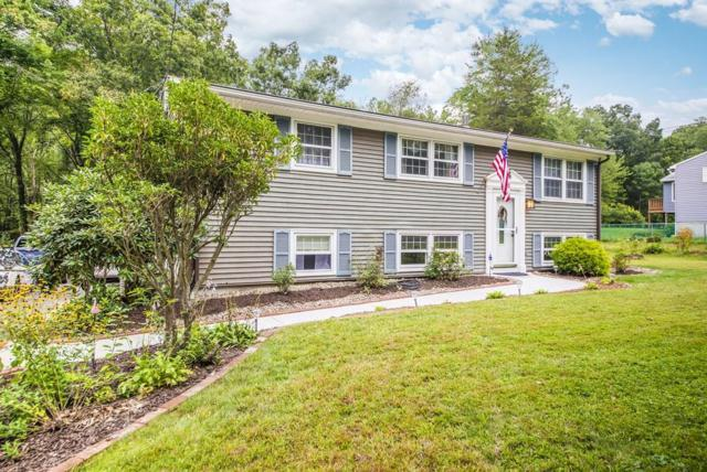724 Fuller St, Ludlow, MA 01056 (MLS #72398763) :: Exit Realty