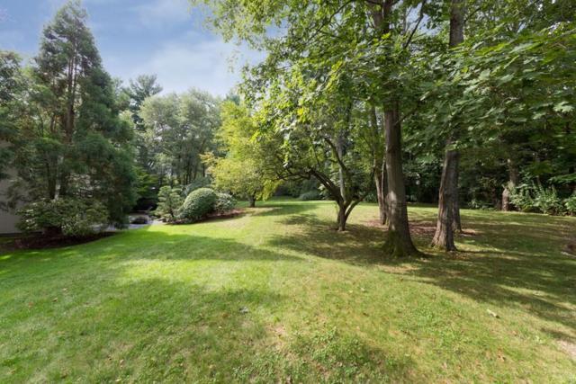 171 Heath St, Brookline, MA 02467 (MLS #72399548) :: Compass Massachusetts LLC