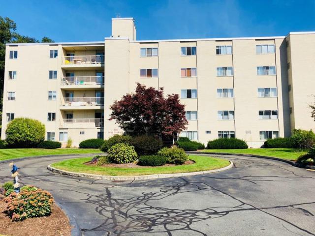 300 Park Terrace Dr #310, Stoneham, MA 02180 (MLS #72403561) :: EdVantage Home Group