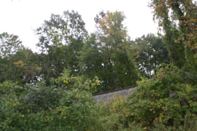 Lot 2 Mt Hermon Station Road, Northfield, MA 01360 (MLS #72405836) :: Westcott Properties