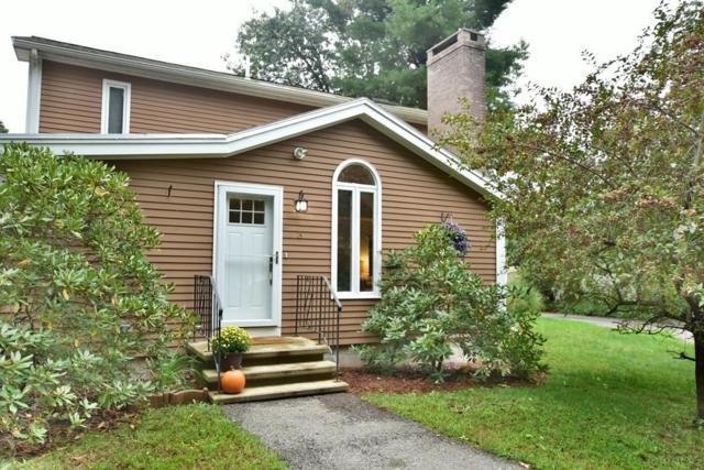 3 Pine Tree Trl, Westford, MA 01886 (MLS #72406013) :: Vanguard Realty
