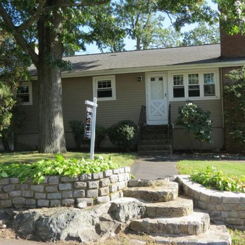 19 Magnolia St, Saugus, MA 01906 (MLS #72408710) :: Anytime Realty