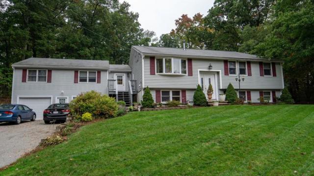 17 Wildbrook Rd, Billerica, MA 01821 (MLS #72411797) :: EdVantage Home Group