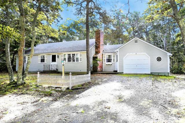 12 Old Meadow Rd, Brewster, MA 02631 (MLS #72413930) :: Westcott Properties