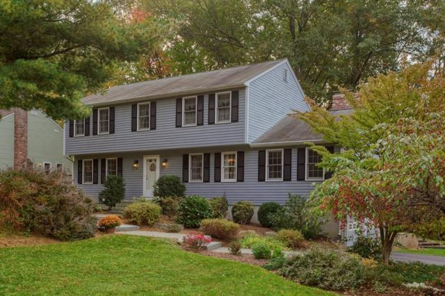 31 Michael Ln, Northbridge, MA 01588 (MLS #72414972) :: ALANTE Real Estate