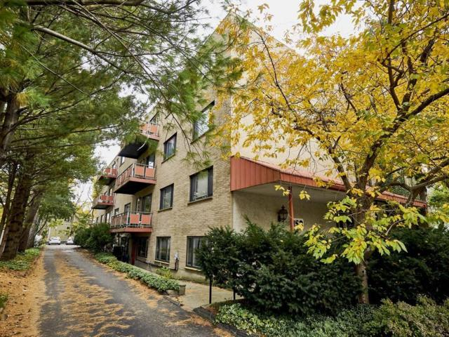 159 Concord Ave 1A, Cambridge, MA 02138 (MLS #72418537) :: Compass Massachusetts LLC