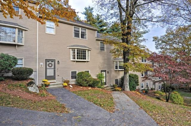 25 Pine View #25, Millis, MA 02054 (MLS #72419120) :: Trust Realty One