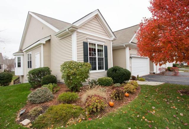 29 Arbor Glen Dr #29, Stow, MA 01775 (MLS #72420918) :: The Home Negotiators