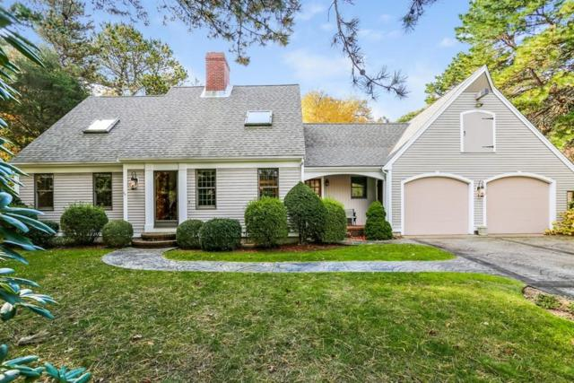 33 Perry Rd, Falmouth, MA 02556 (MLS #72421295) :: Charlesgate Realty Group