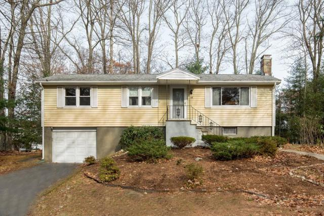 19 Paulson Dr, Burlington, MA 01803 (MLS #72424639) :: Exit Realty