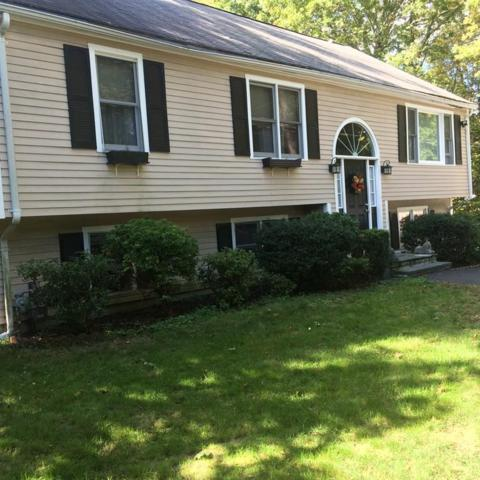 264 Raynor Ave, Whitman, MA 02382 (MLS #72424833) :: Keller Williams Realty Showcase Properties