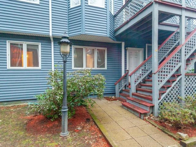 66 Saint James St #102, Boston, MA 02119 (MLS #72429219) :: Charlesgate Realty Group