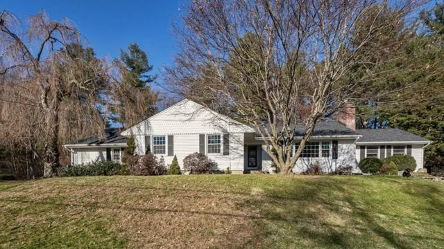 46 Hornbeam Hill Rd, Chelmsford, MA 01824 (MLS #72432751) :: EdVantage Home Group