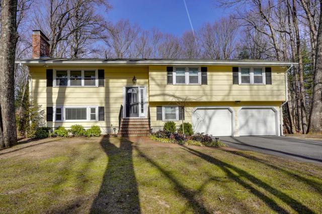 16 Appletree Ln, Walpole, MA 02081 (MLS #72441998) :: Primary National Residential Brokerage