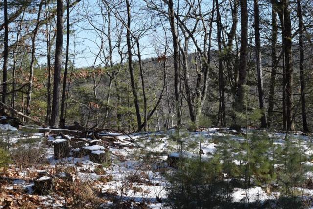 0 Cave Hill Rd., Leverett, MA 01054 (MLS #72448493) :: Apple Country Team of Keller Williams Realty