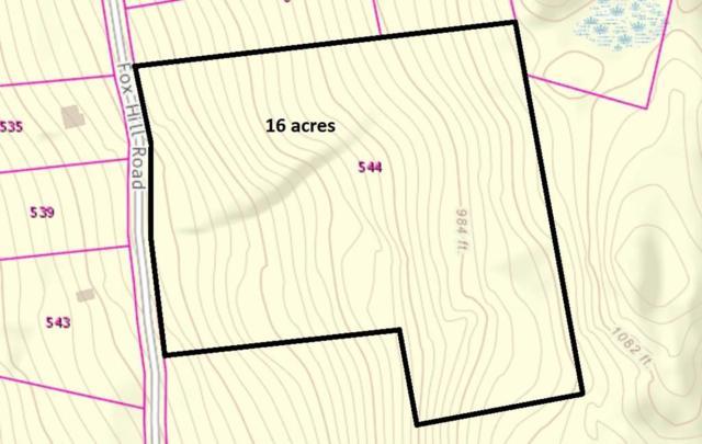 544 Fox Hill Road (Land Only), Bernardston, MA 01337 (MLS #72448761) :: Westcott Properties