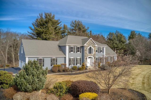 10 Buttonwood Drive, Andover, MA 01810 (MLS #72452834) :: Compass Massachusetts LLC