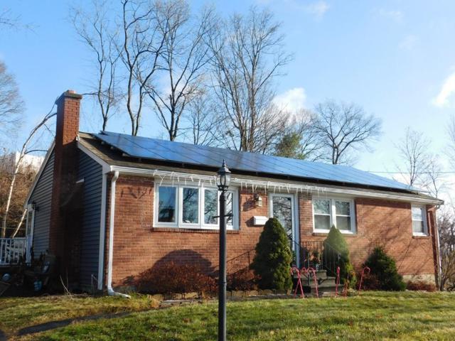 54 Whitelock Drive, Marlborough, MA 01752 (MLS #72461178) :: Westcott Properties