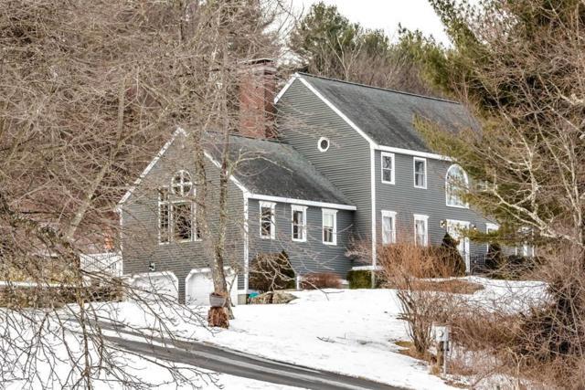 80 Apple Blossom Way, Stow, MA 01775 (MLS #72461302) :: The Home Negotiators