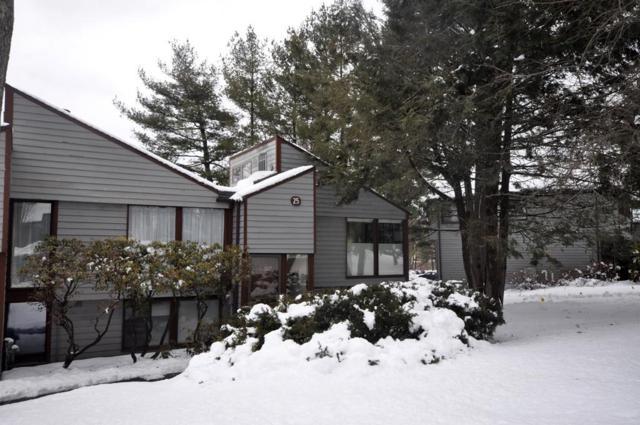 257 Brown Bear Crossing #188, Acton, MA 01718 (MLS #72461610) :: Compass Massachusetts LLC