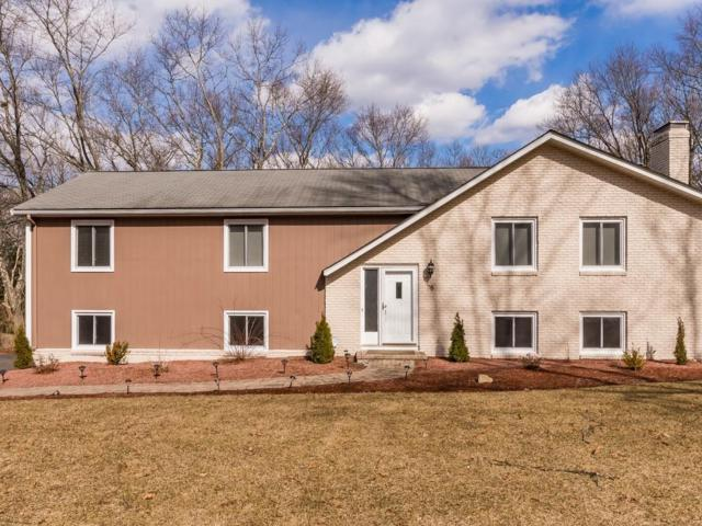 78 Locust Drive, Westwood, MA 02090 (MLS #72471487) :: Exit Realty