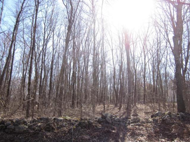 LOT A-1 Tucker, West Brookfield, MA 01585 (MLS #72484162) :: Apple Country Team of Keller Williams Realty