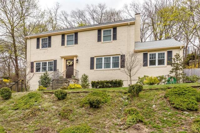 10 Travis Dr, Newton, MA 02467 (MLS #72485863) :: Trust Realty One