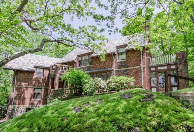 1125 W Roxbury Pkwy, Brookline, MA 02467 (MLS #72486231) :: Trust Realty One
