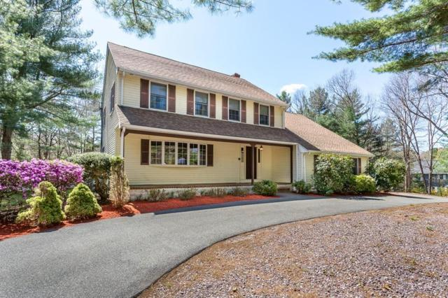 12 Wayside Lane, Canton, MA 02021 (MLS #72491987) :: Apple Country Team of Keller Williams Realty