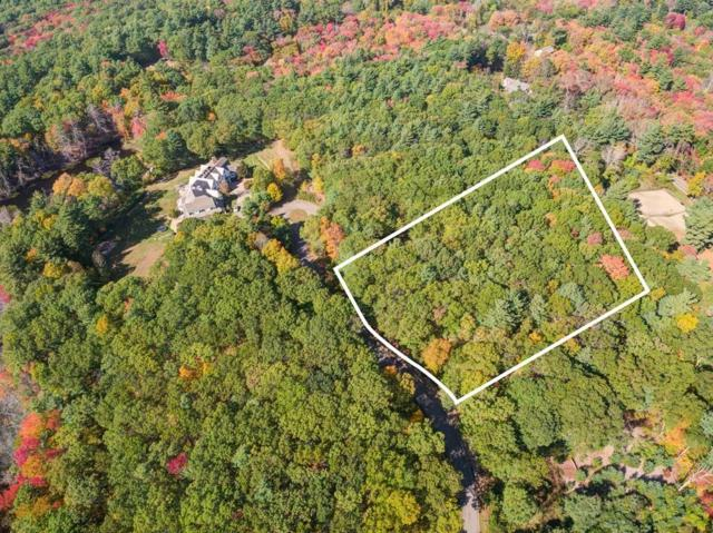Lot 2 Wilson's Way, Dover, MA 02030 (MLS #72495355) :: Apple Country Team of Keller Williams Realty