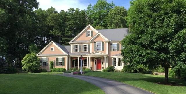 31 Pond View Lane, Concord, MA 01742 (MLS #72496320) :: Apple Country Team of Keller Williams Realty