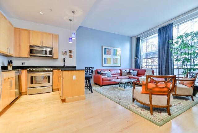181 Essex Street E204, Boston, MA 02111 (MLS #72496464) :: DNA Realty Group