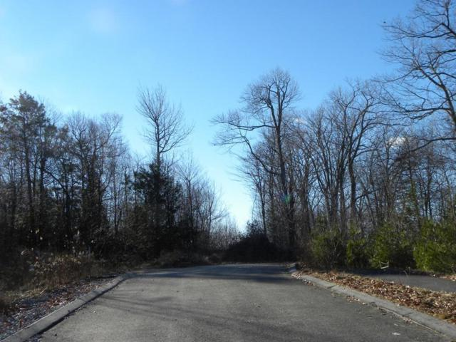 Lot 43 Hycrest Rd, Charlton, MA 01507 (MLS #72497305) :: Apple Country Team of Keller Williams Realty