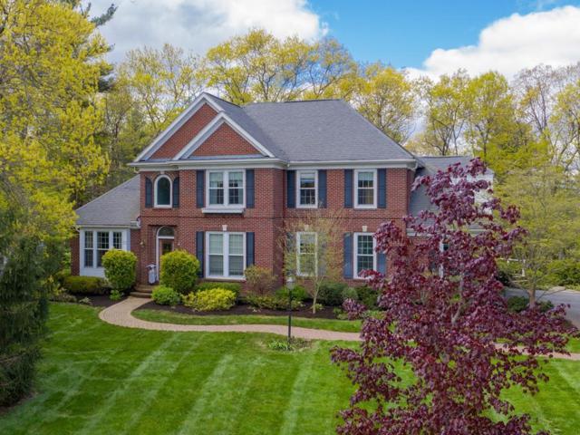 53 Shoreline Drive, Foxboro, MA 02035 (MLS #72501180) :: Primary National Residential Brokerage