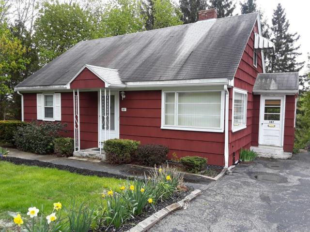 387 Mower St, Worcester, MA 01602 (MLS #72505131) :: Anytime Realty