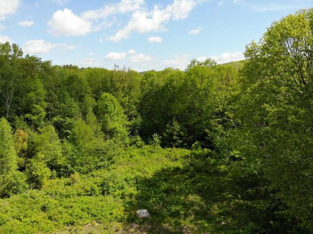 Lot 1 Garfield Rd, Athol, MA 01331 (MLS #72506728) :: Kinlin Grover Real Estate